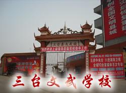 三台县文武职业技术学校图片