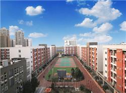 中国五冶大学(高新校区)