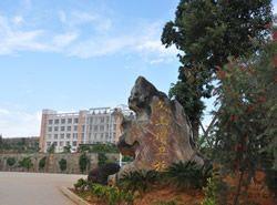 文山州卫生学校图片