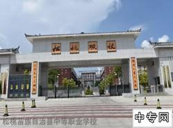 松桃县中等职业学校图片