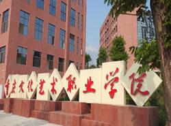 重庆文化艺术职业学院[专科]图片