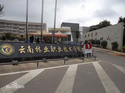 云南林业职业技术学院[专科]图片