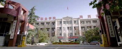 陕西青年职业学院[专科]图片