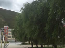 甘孜州炉霍中学[普高]