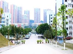 重庆应用技术职业学院(五年制大专)图片