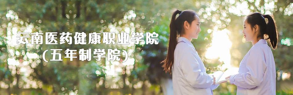云南医药健康职业学院(五年制)