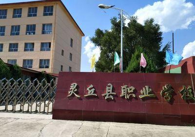 灵丘县职业学校图片