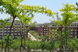 天津中医药大学继续教育学院图片