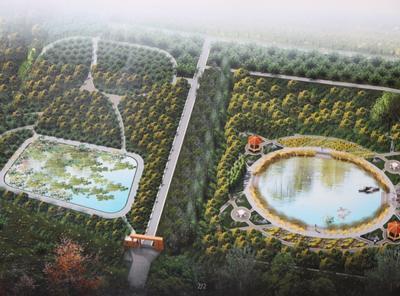 北京市大兴区第一中学图片