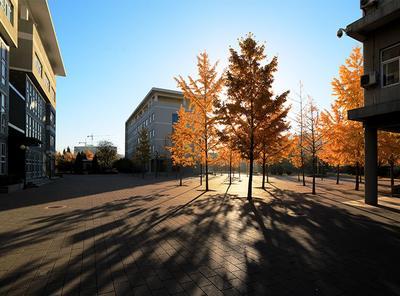 北京市园林学校图片