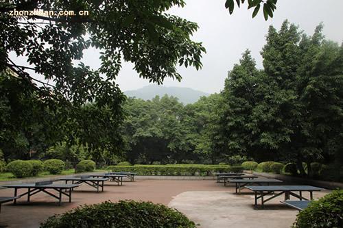 重庆知行卫生学校-校园一角