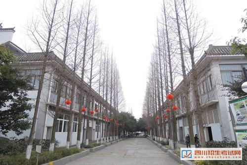 四川大学职业技术学院校园风光