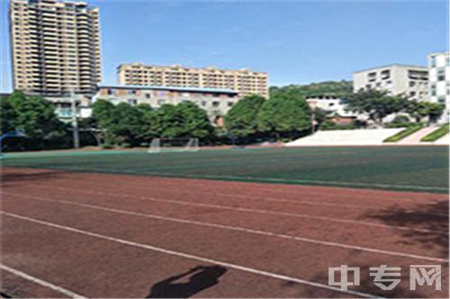 华达综合高中学校[普高]-校园体育场