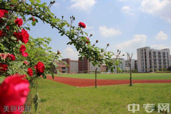 四川省金堂县职业高级中学美丽校园