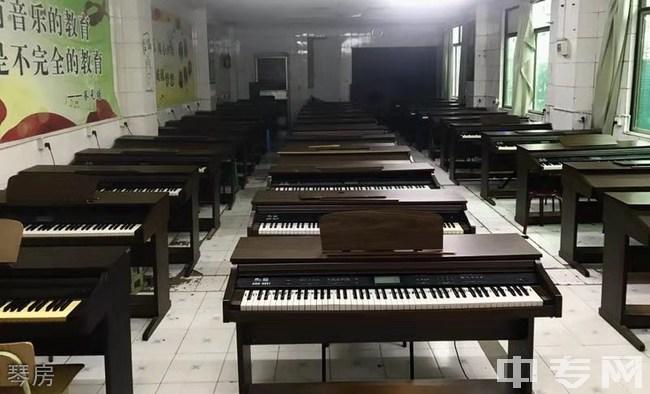 成都华夏旅游商务学校-琴房