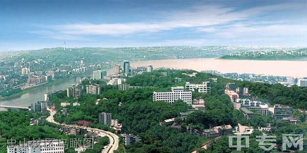 西南医科大学附属医院卫生学校(泸州卫校)忠山校区鸟瞰图