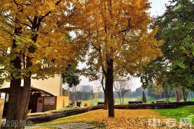 成都市天府新区麓山光亚学校校园景色