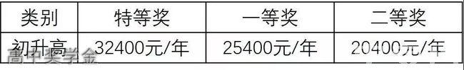 成都棠湖外国语学校高中奖学金