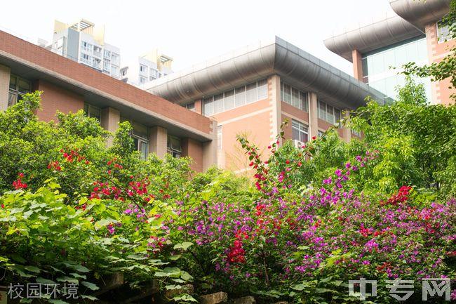 重庆八中校园环境