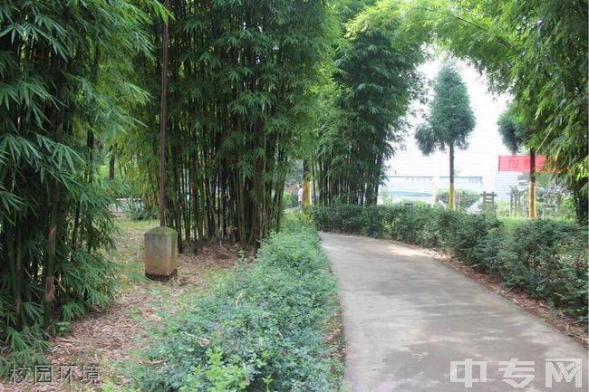 云南省电子信息高级技工学校校园环境