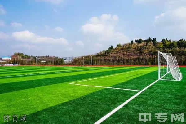 资阳环境科技职业学院体育场