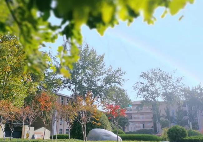 西安市校园美景