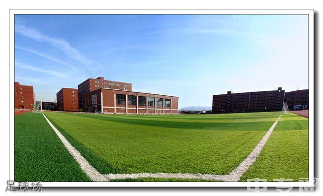 西安铁一中滨河学校[普高]-足球场