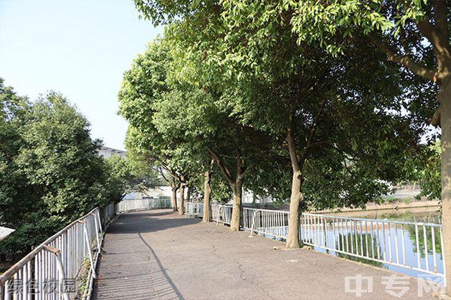 四川蜀都卫生学校绿色校园