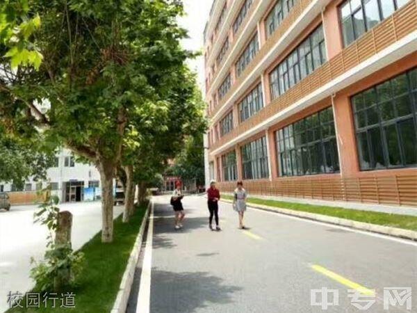 四川省工业贸易学校校园行道