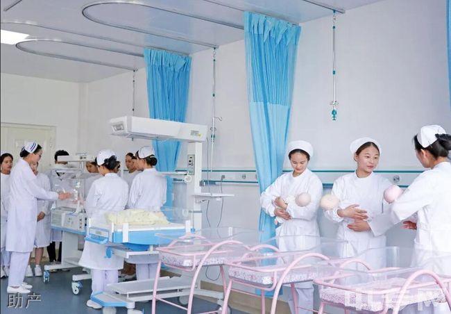 云南医药健康职业学院(五年制)-助产