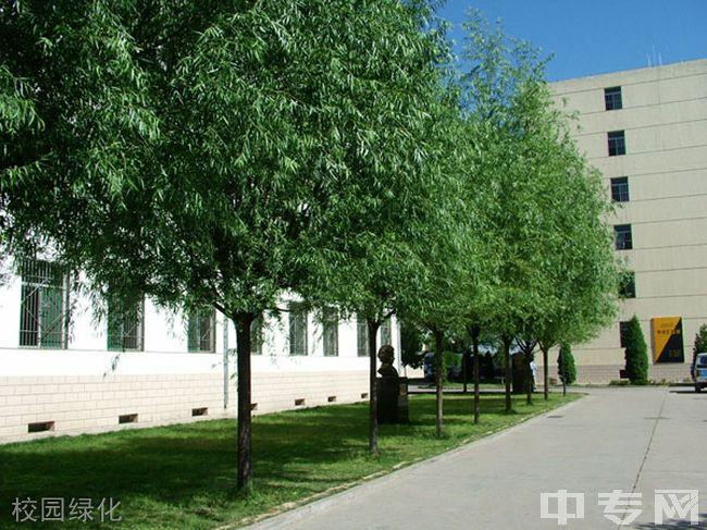 忻州实验中学校校园绿化