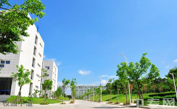 厦门南洋职业学院-校园风采9