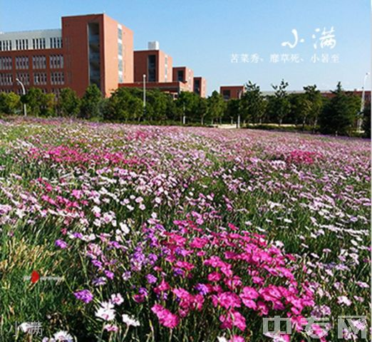 昆明医科大学继续教育学院-校园风采10