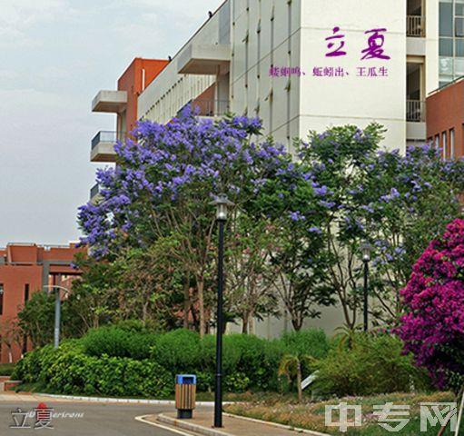 昆明医科大学继续教育学院-校园风采6