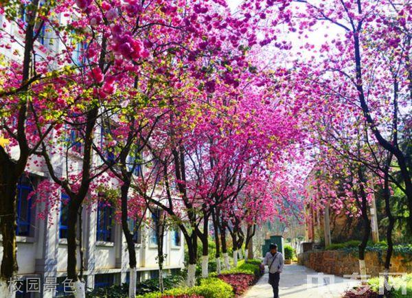 云南机电职业技术学院继续教育学院-校园风采7