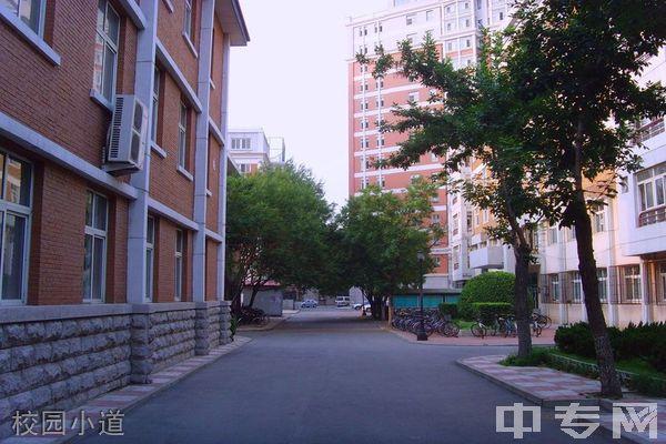 天津外国语大学继续教育学院-校园小道