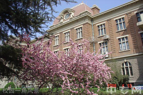 天津外国语大学继续教育学院-校园一角风景