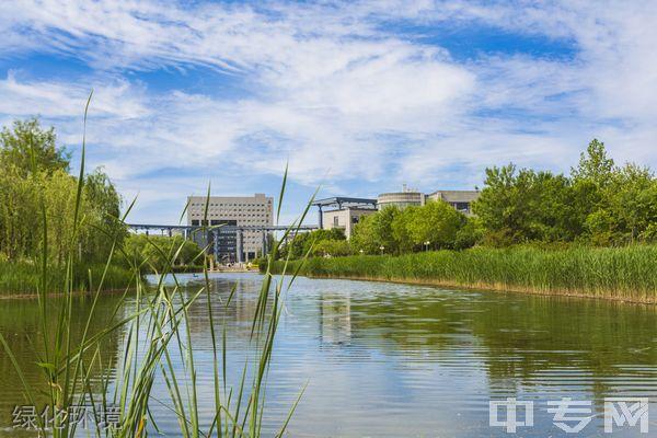 天津师范大学继续教育学院-绿化环境